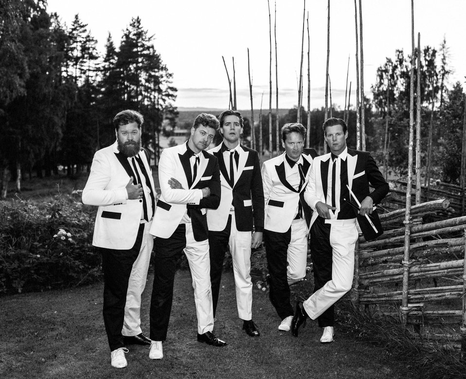Article The Hives til Pstereo image