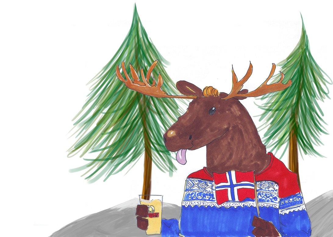 d657e3ef Dusken.no   A survival guide to Trondheim